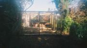 studio009